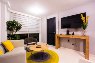 Live Like a Local in this Cheerful Studio