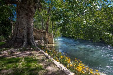 Charmante maison avec accès à la rivière - Fontaine-de-Vaucluse