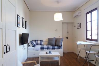 Apartamentos vacacionales en alquiler en el centro de for Alquiler de apartamentos en sevilla centro
