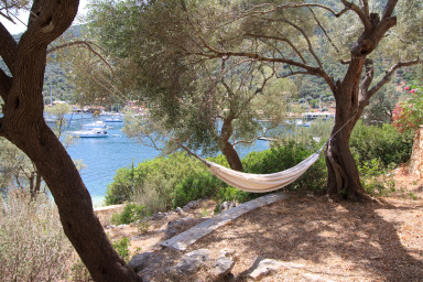 Relaxing hammock in the shadow of olive-trees facing the sea
