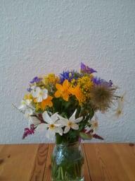 bouquet de fleurs des montagnes