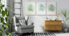 The Monstera Triptych Set of 3