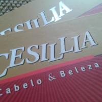 CESILLIA CABELO & BELELZA SALÃO DE BELEZA