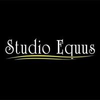 Studio Eqquus SALÃO DE BELEZA