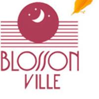 Blosson Ville Cosméticos  OUTROS