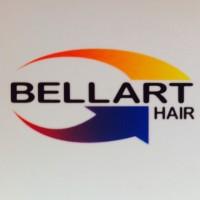 Bellart Hair Ltda. SALÃO DE BELEZA