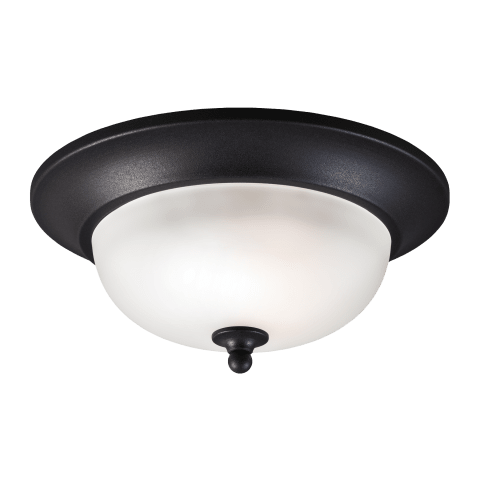 Humboldt Park One Light Outdoor Flush Mount Black