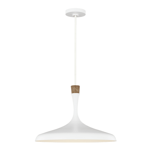 Darwin Large 1 - Light Pendant Matte White