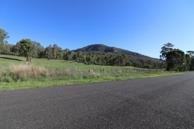 920 Sandy Creek Road Muswellbrook NSW 2333 - Image 2