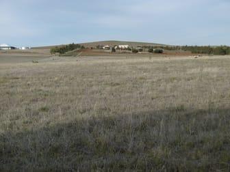 Section 647 Boucaut Road Jamestown SA 5491 - Image 3