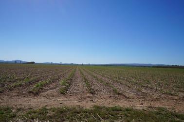 1,2 & 3/87 Chettle Road Mareeba QLD 4880 - Image 1