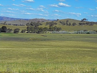 Lot 7 Five Mile Creek Road Gundagai NSW 2722 - Image 3