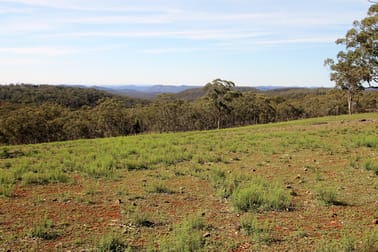 1238 Mogo Road, Mudgee NSW 2850 - Image 1