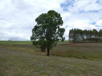 Lot 5/ South Isis Road, South Isis QLD 4660 - Image 2