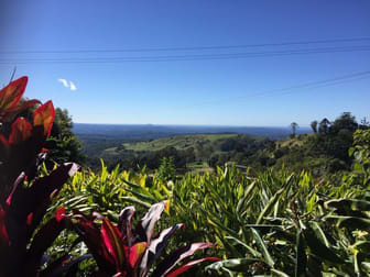 Alcohol & Liquor  business for sale in Maleny - Image 1