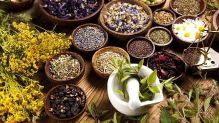 Natural Therapies  business for sale in South Morang - Image 1