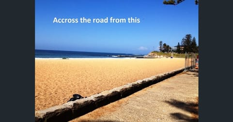 Food, Beverage & Hospitality  business for sale in Collaroy Beach - Image 2