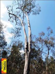 33 Cabbage Gum Drive Millmerran Woods QLD 4357 - Image 1