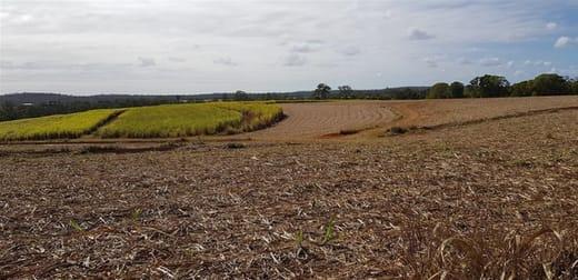 1/19 Framptons Road North Isis QLD 4660 - Image 2