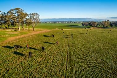 3421 Goldfields Way Sebastopol NSW 2666 - Image 2