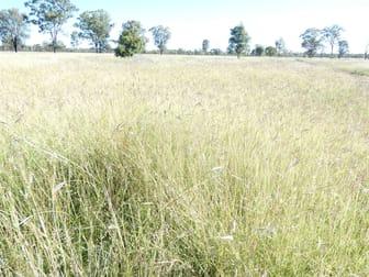 . Mornington Chinchilla QLD 4413 - Image 1