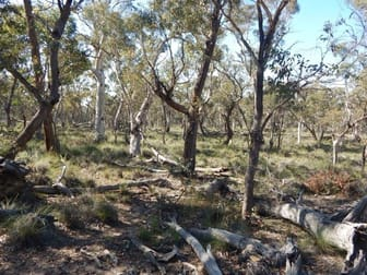 Lot 9 Shannons Flat Road Cooma NSW 2630 - Image 1