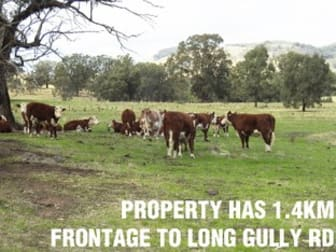Long Gully Road Violet Town VIC 3669 - Image 1