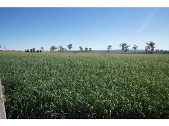 Lester Road Morton Vale QLD 4343 - Image 1