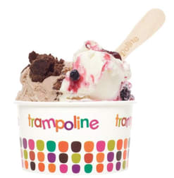Trampoline Gelato Epping franchise for sale - Image 1