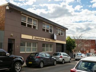 3 Applebee Street St Peters NSW 2044 - Image 1