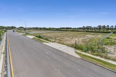 29 Harris Road Pinkenba QLD 4008 - Image 1