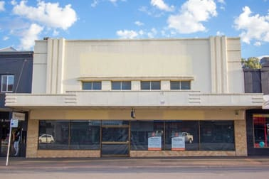 Whole property/117 Boorowa Street Young NSW 2594 - Image 1