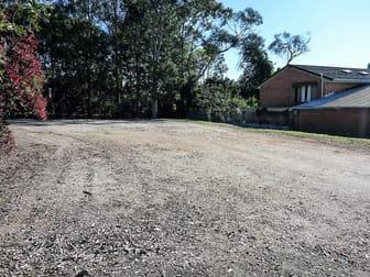 Tenancy 3/Fenced Yard - 15 Merrigal Road Port Macquarie NSW 2444 - Image 3