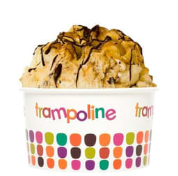 Trampoline Gelato Palmerston City franchise for sale - Image 2