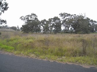 Lot 19 Common Road Muswellbrook NSW 2333 - Image 1