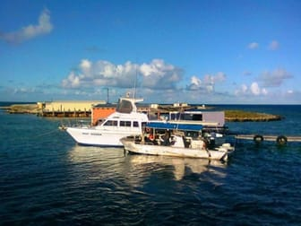 Abrolhos Pearls WA Pty Ltd/272 Foreshore Drive Geraldton WA 6530 - Image 1