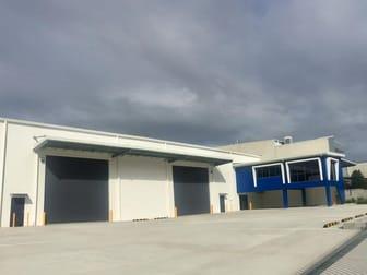 19 Alloy Street Yatala QLD 4207 - Image 1