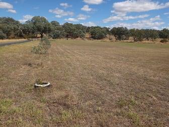 Lot 100 Starlea Road Molong NSW 2866 - Image 1