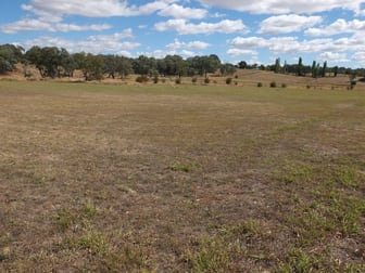 Lot 100 Starlea Road Molong NSW 2866 - Image 2