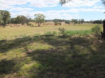 Lot 100 Starlea Road Molong NSW 2866 - Image 3
