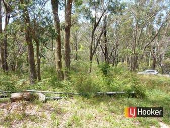 68 Wilson Street Katoomba NSW 2780 - Image 3