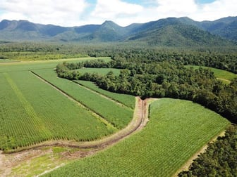 Copleys Road Abergowrie QLD 4850 - Image 2