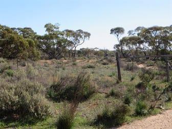 Goyder Highway Westons Flat SA 5320 - Image 1