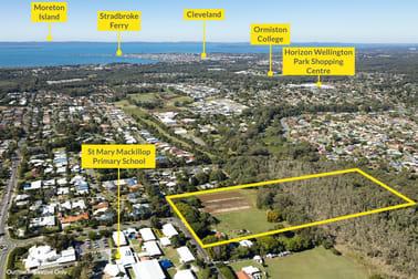 167-185 Collingwood Road Birkdale QLD 4159 - Image 1