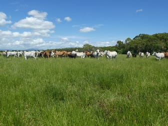 64000 Bruce Highway Innisfail QLD 4860 - Image 3
