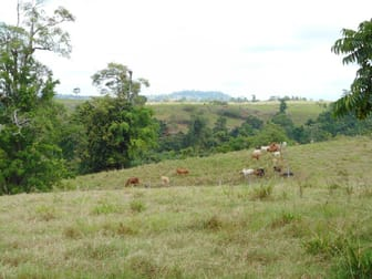 159 Ducrot Road Daradgee QLD 4860 - Image 1