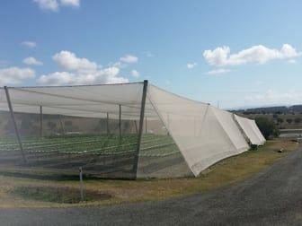 2186 Warrego Hwy, Haigslea QLD 4306 - Image 3