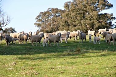 Mount Henry South/1159 Binda Road Crookwell NSW 2583 - Image 1