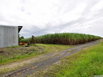 203 Murdering Point Road Silkwood QLD 4856 - Image 3