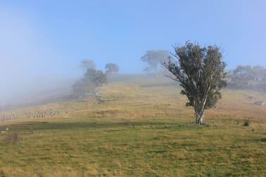 Gables, Nanangroe Road Berremangra NSW 2582 - Image 3